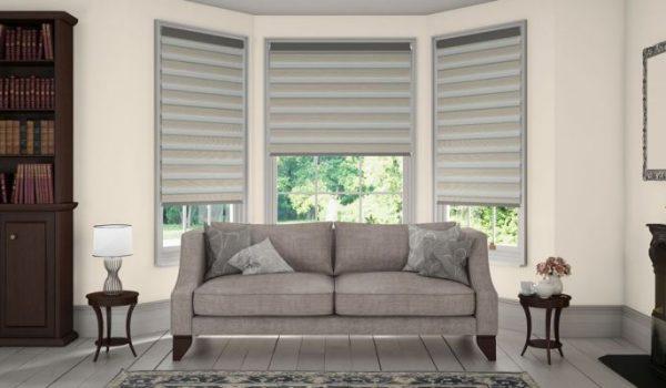 Classic Living Room Senses Mirage vision window blinds