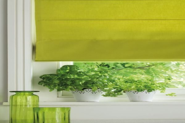 close-up-lime-window-blinds