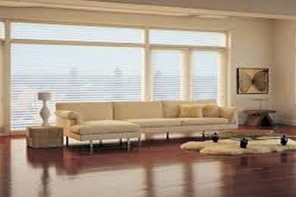 room-shot-woods-wooden-window-blinds